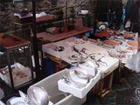 Fischmarkt Catania