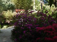 Hellergarten