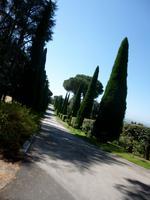 Papstgarten Castel Gandolfo