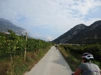 1. Tag Riva del Garda - In den Weinbergen (2)