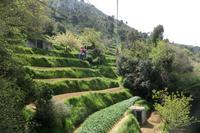 Anacapri Seilbahnfahrt Monte Solaro