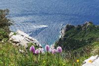 Blick vom Monte Solaro