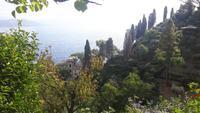 Portofino (Ausblick vom Castello Brown)