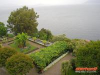 Garten auf der Isola Madre