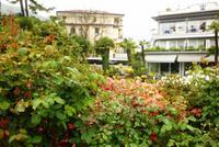 22.04.2015 Gartenbereich Hotel Royal, Stresa