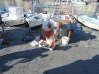 Vorbereitung der Tintenfischköder im Hafen von Lipari