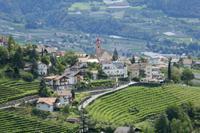 Blick vom Schloss Tirol auf das Dorf Tirol