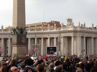 204 Palmsonntag auf dem Petersplatz