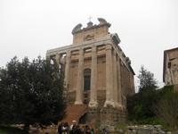 Besichtigung des Forum Romanum (Tempel der Faustina und des Antonius Pius)