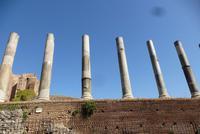 Rom, Forum Romanum (13)