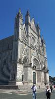 Orvieto (Dom)