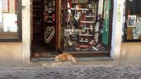 Römischer Wachhund