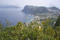 Insel Capri (Blick auf Marina Grande)