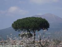 in Pompei mit Blick auf den Vesuv