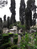 61_Rom_Protest.Friedhof_1