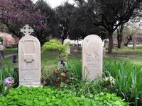 26_Rom_Protest.Friedhof