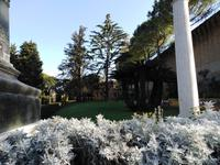 Rom, 18.10.2018, Vatikanische Gärten
