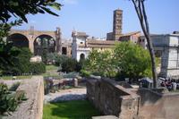 Spaziergang vom Palatinhügel zum Forum Romanum