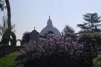 Führung in den Vatikanischen Gärten
