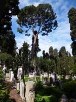 Friedhof_Nichtkatholischer (3)