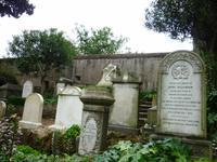 23.05.2014 Rom Nichtkatholischer Friedhof