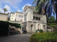 Vatikanische_Gärten (2)
