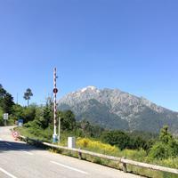 Pass Vizzavona