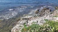 Küste in Alghero