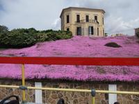 Alghero. Villa im Süden
