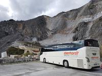 203_Carrara