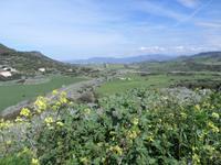 Landschaft bei Castelsardo