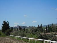 San Andrea Safranfarm (8)
