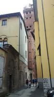 Lucca (Altstadt - Torre Guinigi)