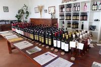 Weinverkostung bei Weinbauer Montaioncino