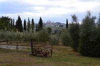 Blick auf die Türme von San Gimignano