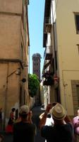 46_Lucca_Guinigi_Turm