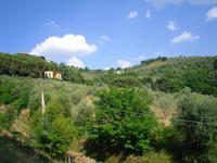 Auffahrt nach Montecatini-Alto