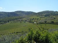 Chianti-Weinstrasse