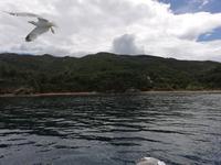 Bootsfahrt entlang der