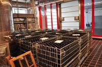 Weingut Tenuta di Castellaro, Lipari, Äolische Inseln