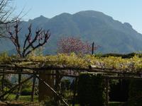 Ravello Villa Cimbrone 7