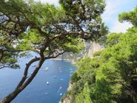 Ausflug nach Capri