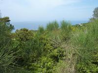 Ausblicke auf die Küste des Cilento