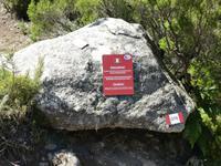 Italien, Elba, Wanderung Monte Capanne, Klettersteig
