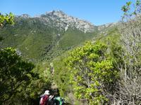 Italien, Elba, Wanderung Monte Capanne, Abstieg