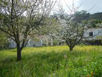 Wanderung Buonpane - Fiaiano - Castiglione