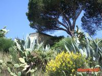 Wanderweg von Bonassola - Levanto