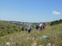 Wanderung in der Basilikata - Gravina Schlucht bei Matera (Apulien - Italien) (11)