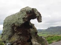steinerner Elefant bei Castelsardo