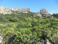 sardisches Bergland